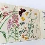 Set of 3 hand-sewn notebooks / journals made from The Country Diary of an Edwardian Lady